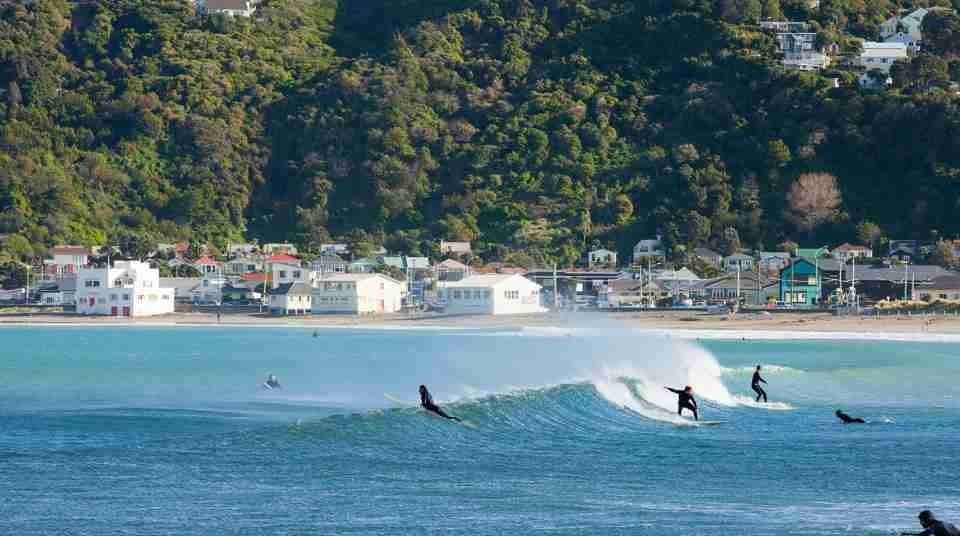 Lyall Bay_surfers